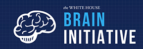 The Brain Initiative